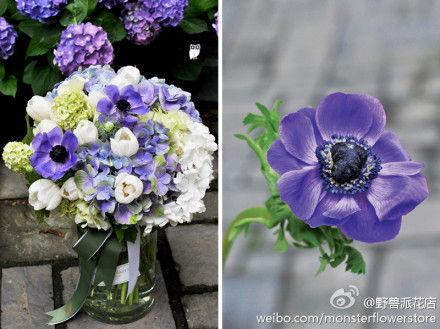 野兽派花店轻易卖出千元鲜花花盒的秘密:抓住情感和体验诉求